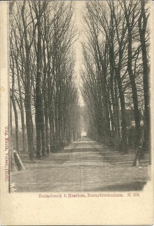 Oude ansichtkaart uit begin 1900 van de Bennebroekerlaan