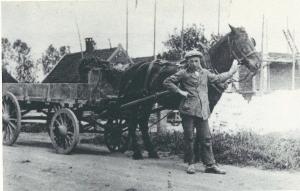 Behalve Vernooy stond Karel Hulsbosch geregistreerd als vrachtrijder. Op deze foto uit omstreeks 1930 staat Hulsbosch met zijn kar waarmee hij langs de huizen ging om vuilnis op te halen. Op de gemeentelijke vuilnisbelt.