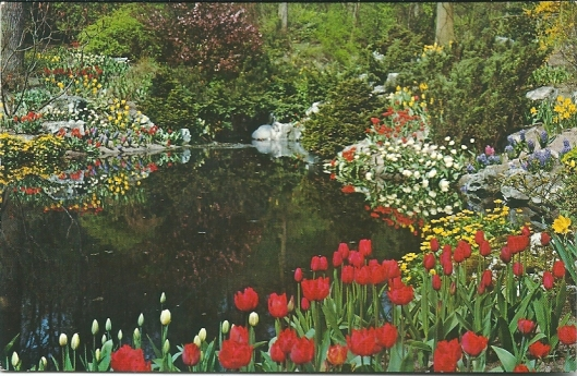 Linnaeushof met waterval