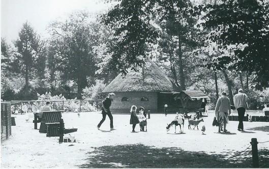 De kinderboerderij van Groenendal trekt kinderen, oiders en grootouders uit Heemstede en de verre omgeving