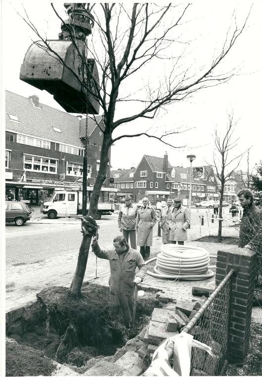 Het planten van bomen bij de winkelpassage aan de Binnenweg (1984)