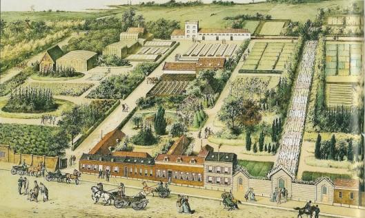 Overzichtskaart van bloemkwekerij de Bloemhof van de firma Krelage aan de Kleine Houtweg, begin vorige eeuw (Noord-Hollands Archief)