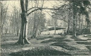 De Flora 1935 in aanbouw. De bollen zijn geplant en op de donkere plekken prijkten enkele weken later de bloemen.
