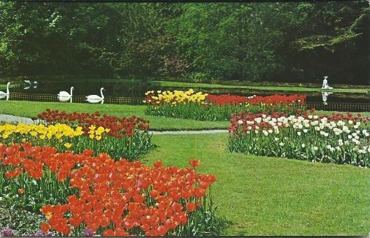 Linnaeushof: park en vijver met zwanen