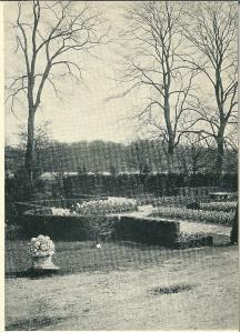 Een kiek van de Flora 1925 met de bomen van Groenendaal op de achtergrond