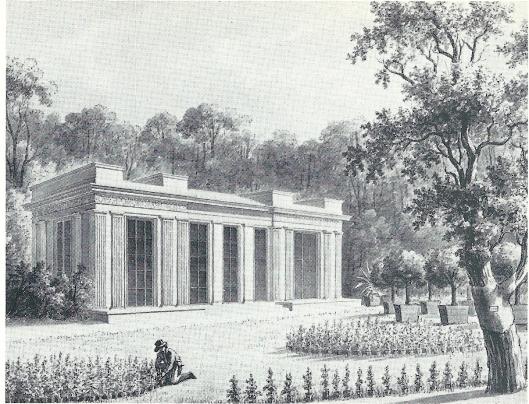 Anonieme tekening uit omstreeks 1800 van de Oranjerie van de Hartekamp en de Linnaeus geplante tulpenboom (NHA)