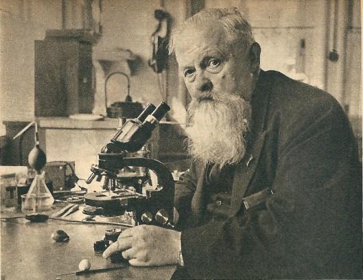 Prof. dr.E.van Slogteren (1888-1968) uit Heemstede die zich na zijn pensionering naar 'Huis te Bennebroek' verhuisde, in tijdschrift De Spiegel van 20-10-1951 vanwege zijn meer dan 30 jarige arbeid ter bevordering van de bloembollencultuur. Gefotografeerd in het Laboratorium voor Bloembollenonderzoek in Lisse