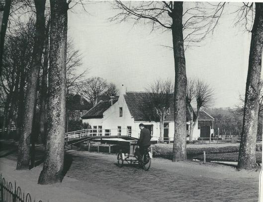 Foto uit het Spaarnestad Fotoarchief met statige bomen langs de Bennebroekerlaan ter hoogte van huize Flora, nr. 43. Rechts de Reek.