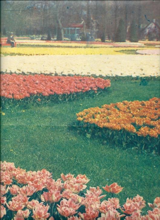 Afscheid aan 'de Flora'. Uit: de katholieke Illustratie van 1935
