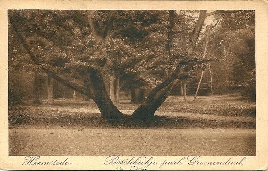 Ansichtkaart van Groenendaal uit 1927