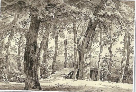 'Leiduin', tekening in O.I.inkt door E.van Drielst uit omstreeks 1790