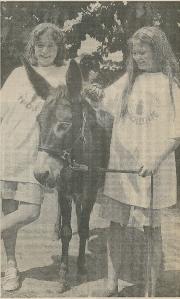 De ezel Moos na de tocht in juli 1992 weer op kinderboerderij 't Molentje in Heemstede