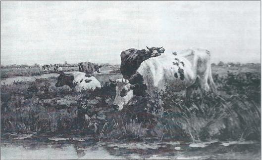 Schilderij van koeien op de weilanden van Meermond, vervaardigd door Herman G.Wolbers in 1879
