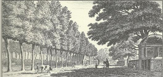 'Aan de Heerenweg by Oud-Berkenrode na de Dorstige Kuil' gravure naar Hendrik Spilman (1762)