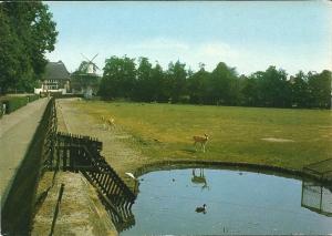 Hertenkamp Groenendaal Heemstede met het molentje op de achtergrond