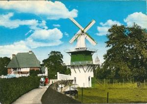 Hertenkamp met molentje Groenendaal. Daarachter de Molenlaan en in de verte de kerktoren van O.L.V.Hemelvaartkerk aan het Valkenburgerplein