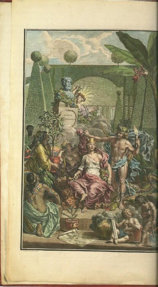 Ingekleurd frontispice Hortus Cliffortianus, 1737 (UB-Amsterdam)