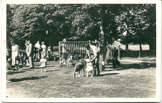 Kinderboerderij Groenendaal circa 1950