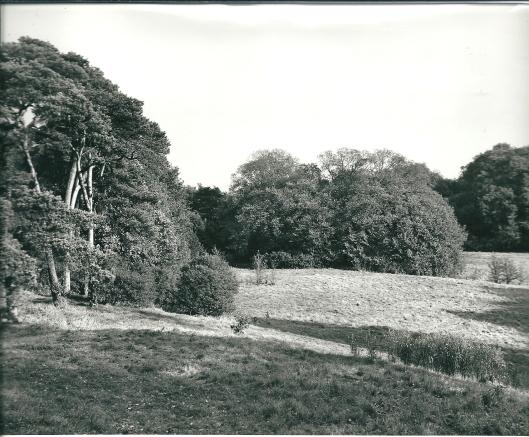 De overplaats van de Hartekamp op een forto uit circa 1970