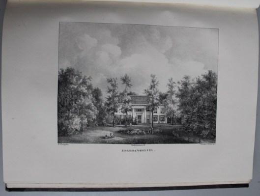 Sparrenheuvel