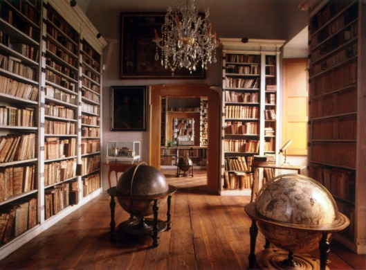 Overzicht van de kasteelbibliotheek in Mnichovi
