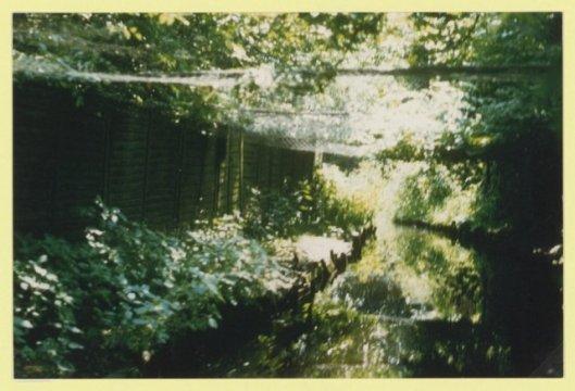 Eendenkooi Vijfhuizen van Stokman, Kromme Spieringweg (NHA)