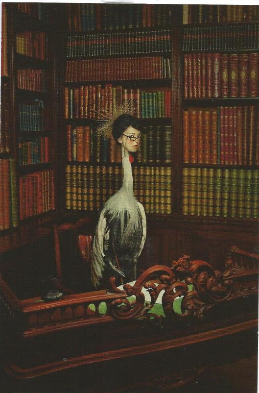 Uit fotoserie 'Het beest in mij' voor Hollands Diep. Schrijfster Lieve Joris als kraanvogel in Slot Zuilen (Erwin Olof, 2009)