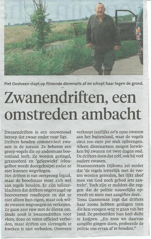 Bericht over moderne omstreden zwanendrift uit Haarlems Dagblad, 16-7-2015.