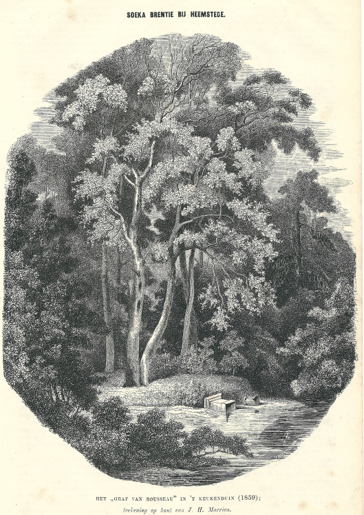 Soeka Brentie bij Heemstede. Het 'graf van Rousseau' in het Keukenduin, zuidelijk van Meer en Berg. Houtgarvure van J.H.Morrien uit 1859. Gepubliceerd in: Nederlandsch magazijn, 1863. nr.30, pagina 233.