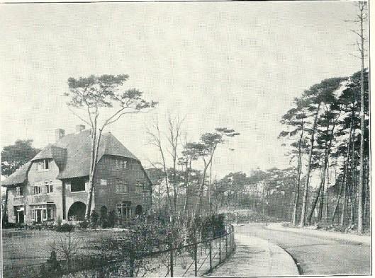 Villavouw in het Grotstuk, Groenendaal Heemstede
