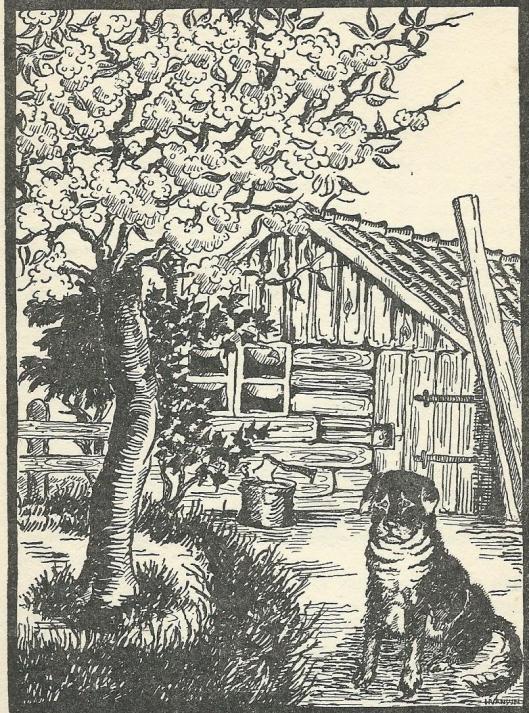 """""""Het oude schuurtje en Odin, de trouwe hond"""", illustratie uit: Romdom het oude schuurtje door M.de Groot-Kuylman."""