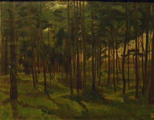 Dennenbos; door G.H.G.von Brucken Fock (Frans Hals Museum)