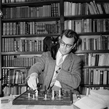 Bomans met poes op de schouder speelt schaak tegen zichzelf.