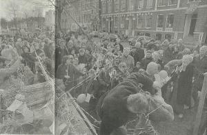 25 maart zijn onder grote belangstelling Bomans-beukjes geplant aan de Parklaan tegenover nummer 12 waar hij als kind woonde. (Haarlems Dagblad, 27 maart 2015).