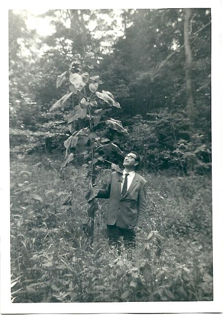 Godfried Bomans bij een reuzenplant in de tuin