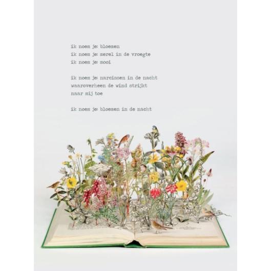 Poëzieposter met vers van Jan Hanlo en illustratie door Su Blackwell (uitgeverij Plint)