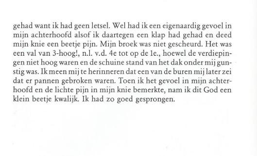 Vervolg van Jan Hanlo: Zonder geluk valt niemand van het dak.
