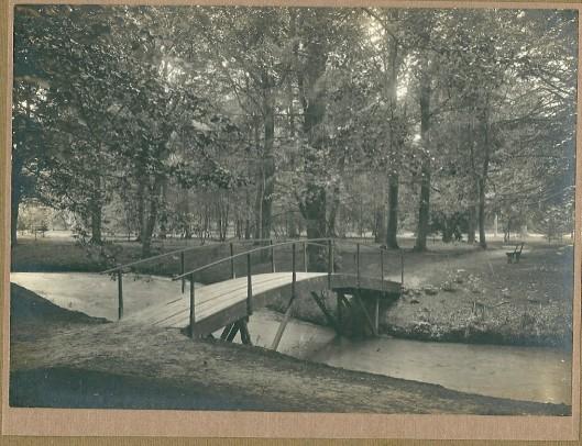 4 Groenedaal: bosgezicht met houten voetbrug over vijvertje