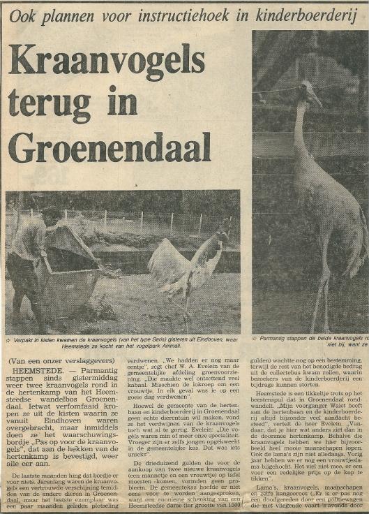 Kraanvogels terug in Groenendaal. Uit: Haarlems Dagblad van 27 september 1979