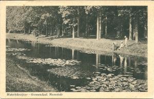 Waterlelievijver Groenendaal, 1925