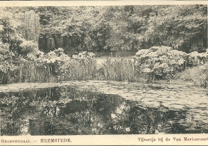 Vijvertje met waterlelies bij de Van Merlenvaart in Groenendaal