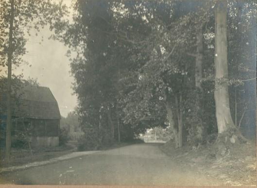 Groenendaal met in de verte de boerderij van Merlenhoven