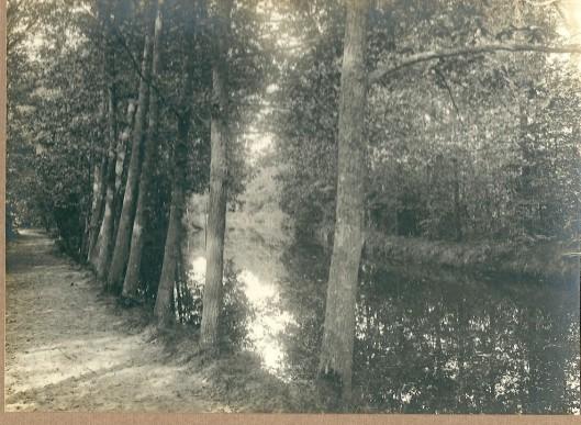 Vijver Groenendaal