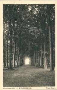 Prentbriefkaart uit omstreeks 1930 van de Torenlaan