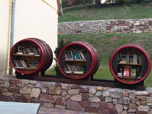 Vrije openbare minibibliotheek nabij het Balaton Meer in Hongarije (Elisa Delisa)