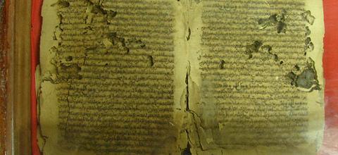Een manuscript door termieten aangetast (foto Leslie Lewis)