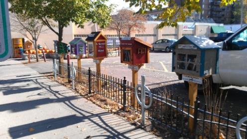 De eerste little free library street in Toronto, Canada