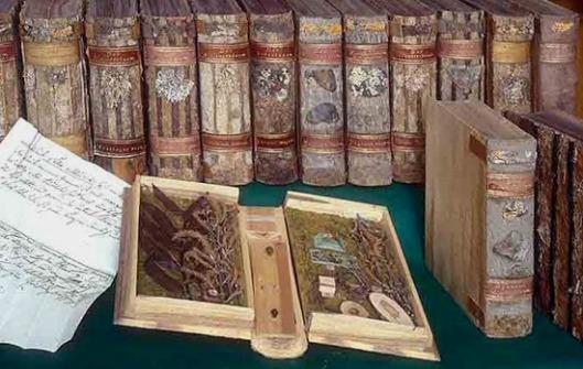 Kremsmünster bezitr een xylotheek ofwel houbibliotheek uit het begin van de 19e eeuw, bestaande uit 184 houten banden (foto Harald Schmid)