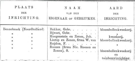 Bloembollenkwekers in Bennebroek, 1906