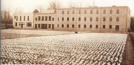 Het kantoor en bloembollenhuis van kwekerij G.C.van Meeuwen & Zonen uit omstreeks 1938, gelegen aan de Herenweg en Manpadslaan in Heemstede